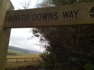 N is for the North Downs